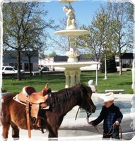 image of boy with horse in front of the fountain